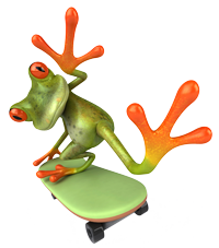 Frogskin Graphics Frog on Skateboard